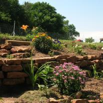 My flower garden.