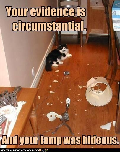 circumstantial evidence 2